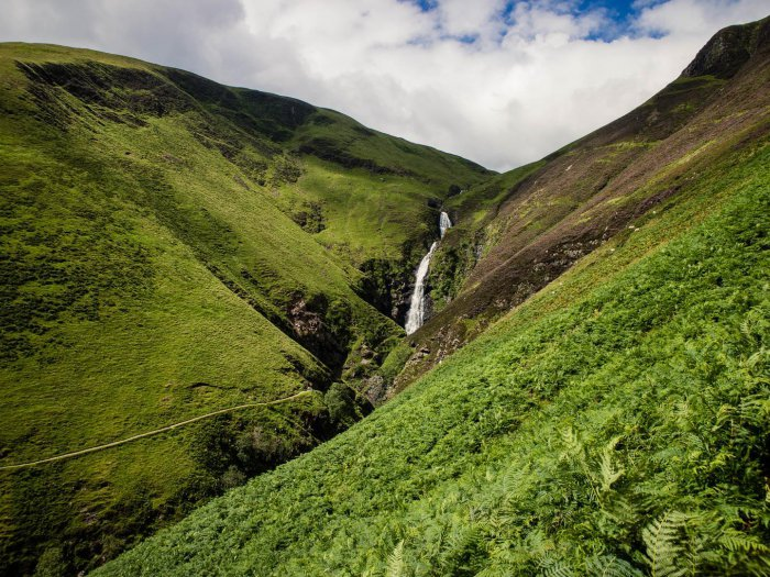 Grey Mares Tail August 2017 Kathi Kamleitner 24